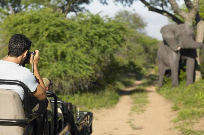 Man-on-safari-taking-photograph-of-elephant-back-view